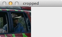 Figure 5: Cropping is simple with Python and OpenCV -- we're just slicing NumPy arrays!