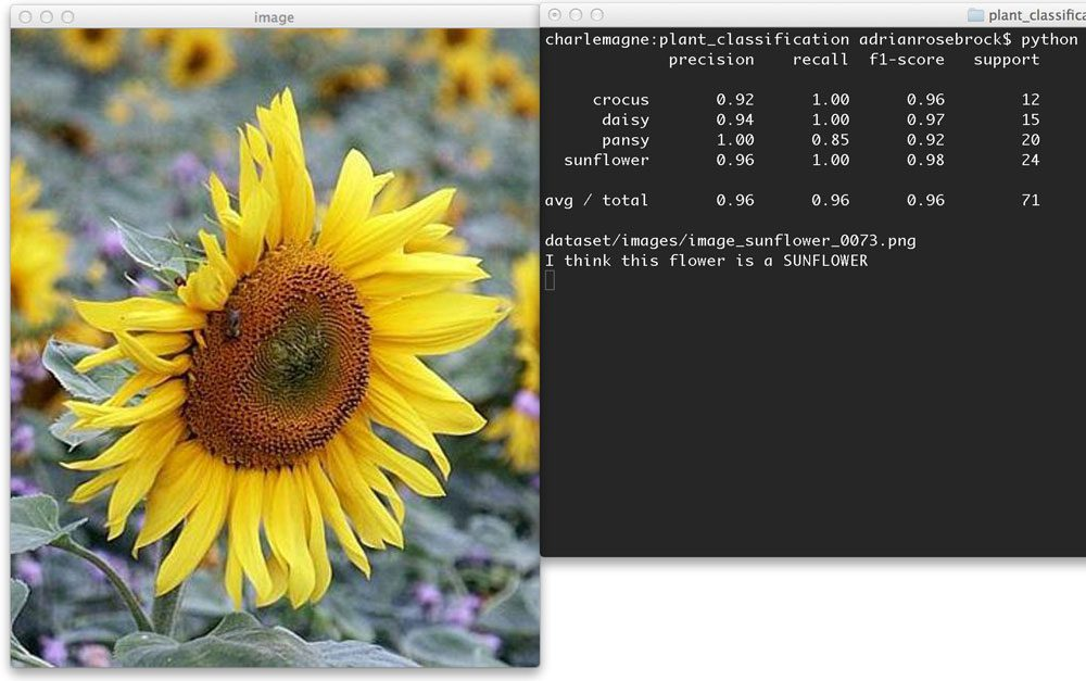Figure 4: Learn how to apply machine learning techniques to classify the species of flowers.
