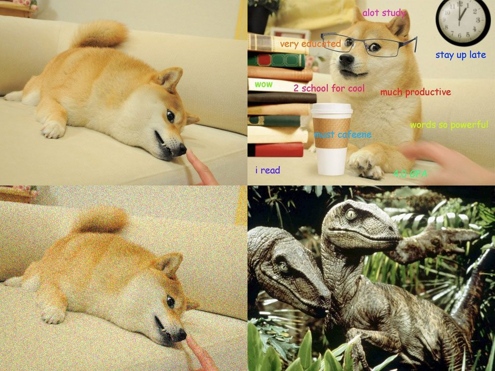 Figure 1: Our test dataset of four images -- two images of Doge, one with Gaussian noise added, and velociraptors, for good measure.