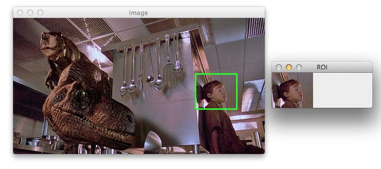 Figure 3: Cropping the actual image.