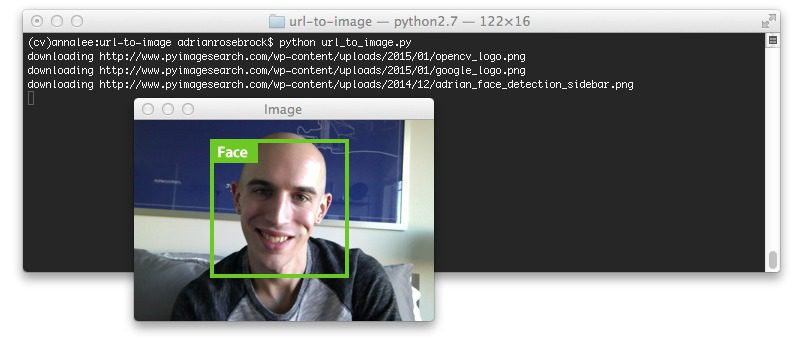 Figure 3: Converting an image URL to OpenCV format with Python.