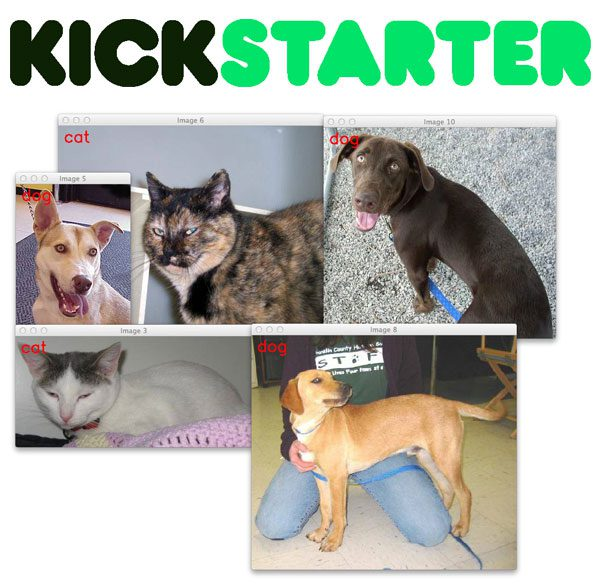 gurus_kickstarter_cat_dog_demo