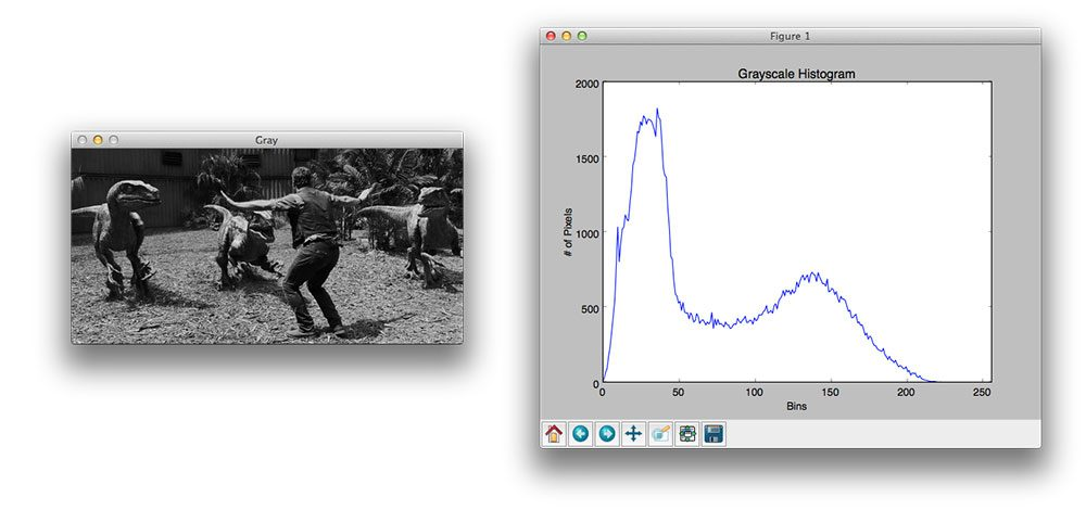 Figure 1: Our end goal is to utilize matplotlib to display a grayscale pixel intensity for the image on the left.