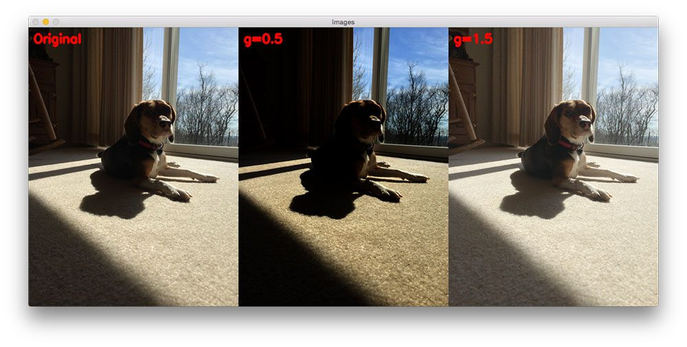 Figure 1: Our original image (left); Gamma correction with G 1 (right), this time the output image is much lighter than the original.
