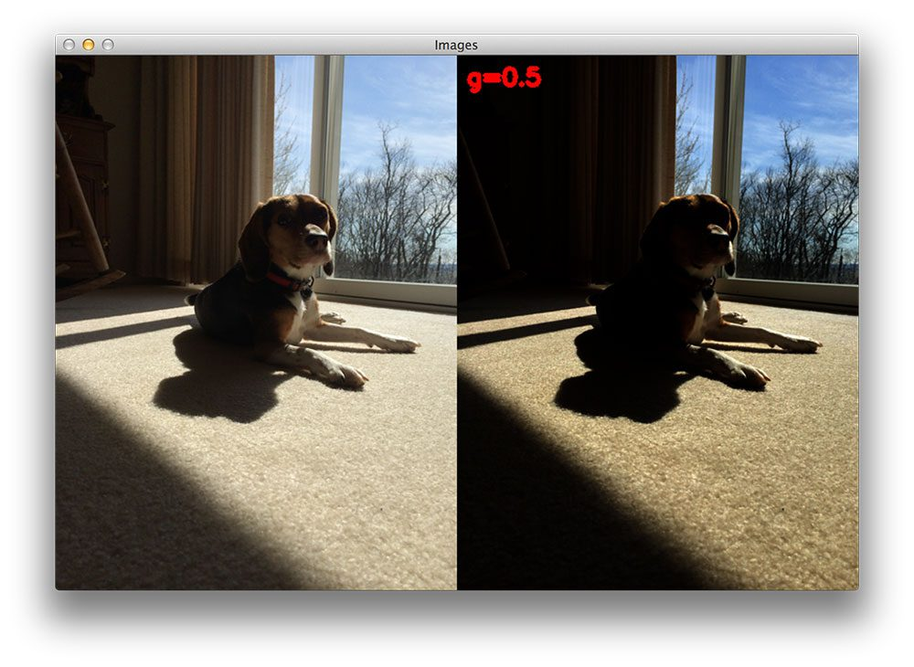 Figure 2: When applying gamma correction with G < 1, the output image is will darker than the original input image.