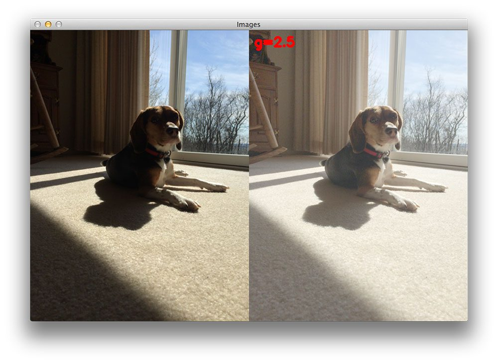 Figure 5: However, if we carry gamma correction too far, the image will start to appear washed out.