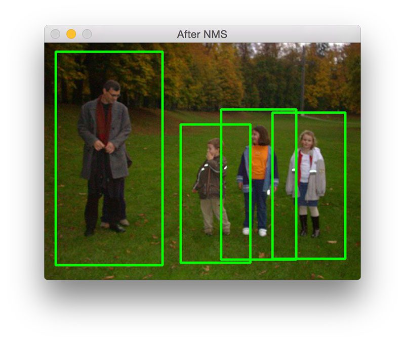 Figure 8: Detecting four members of a family.
