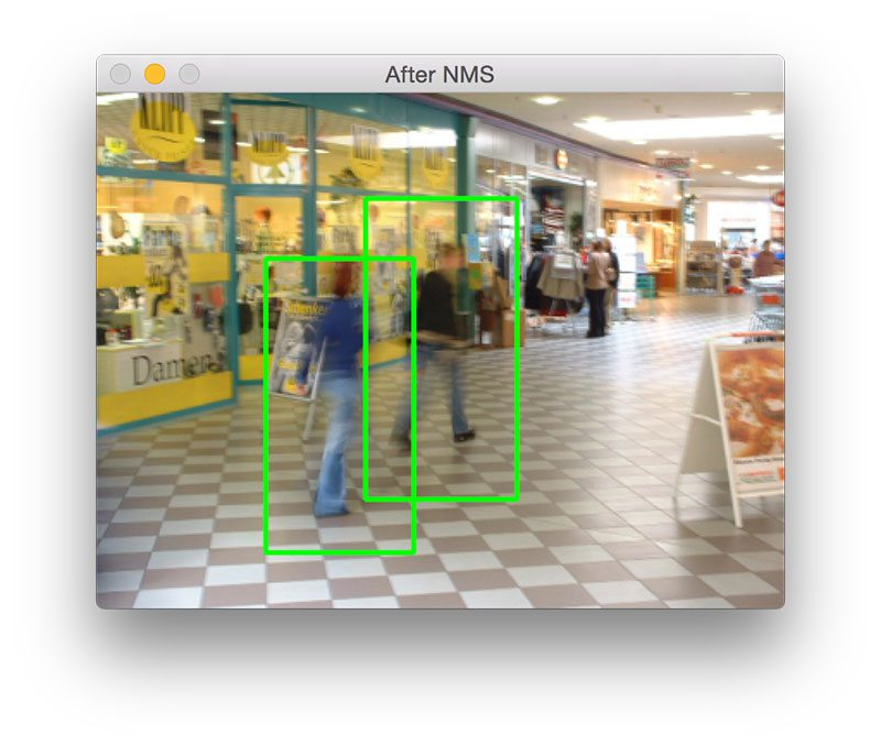 Figure 6: Detecting people in a blurred image.