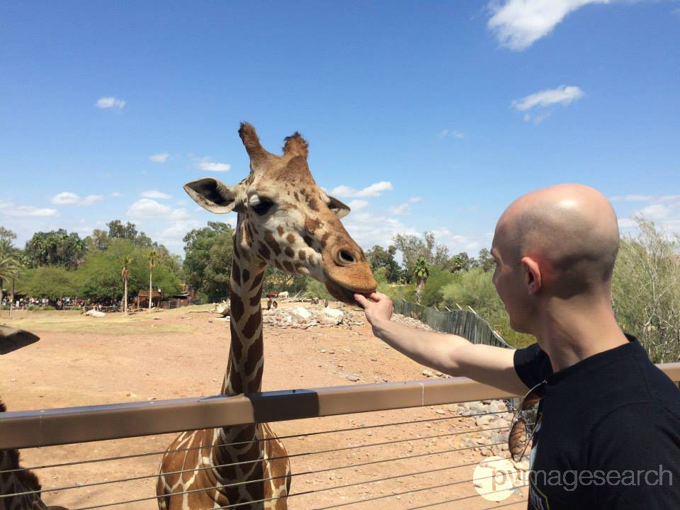 Figure 5: Feed a giraffe...and watermarking the image with computer vision.