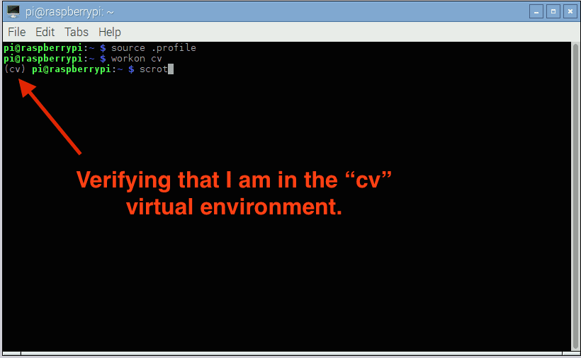 "Figure 2: I can tell I am in the ""cv"" virtual environment because I can see the text ""(cv)"" before my prompt."