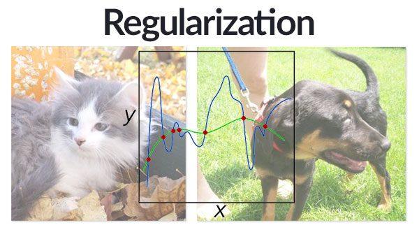 regularization_header