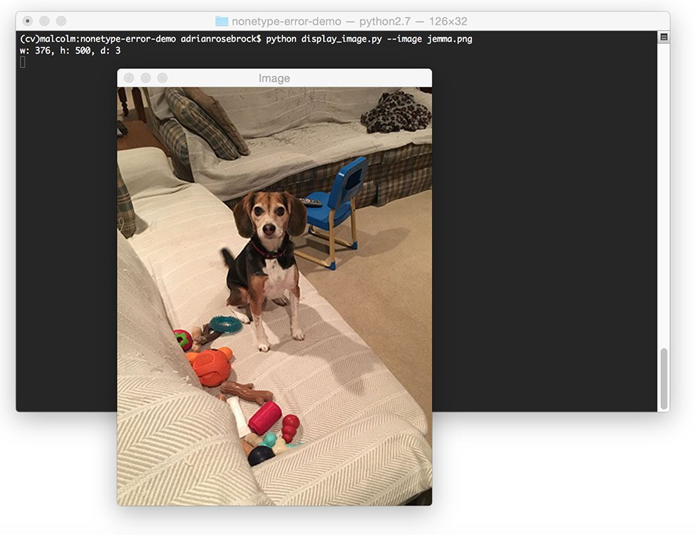 Figure 1: Loading and displaying an image to my screen with OpenCV and Python.
