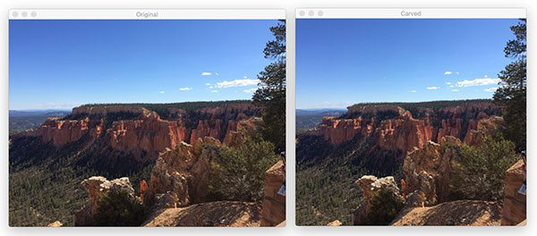 Figure 8: (Left) The original input image. (Right) Removing vertical seams from the image, thereby decreasing the image width.